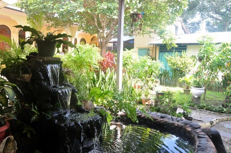 delfika bandaneira garden