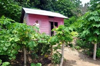 pulau hatta house